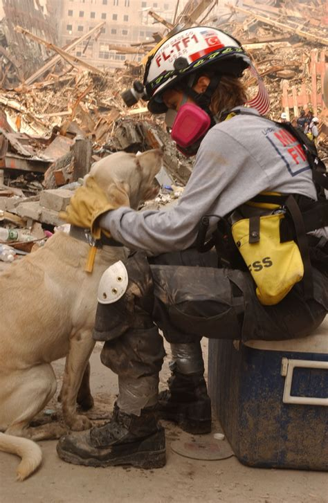 9 11 Rescue Workers Detox by September 24 2001 Rescue Workers Work With Dogs To