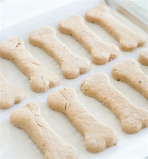 baby food for dogs treat recipes your pup will