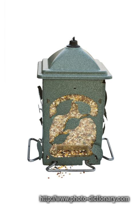 Feeder Define bird feeder photo picture definition at photo dictionary bird feeder word and phrase defined