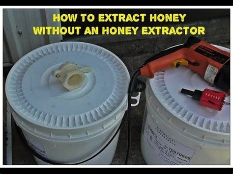 how to extract honey from a top bar hive 1000 ideas about honey extractor on pinterest