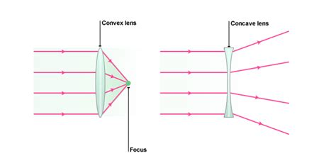 diagram of concave and convex lens convex lens difference between concave convex lens