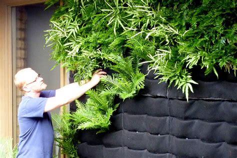 jardim vertical saiba como criar e alegrar as paredes da