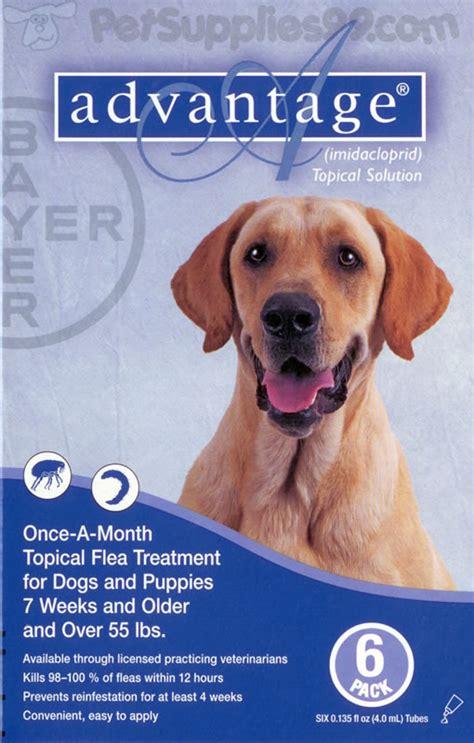 flea killer for dogs advantage flea killer for dogs