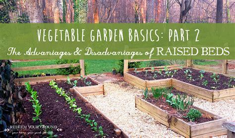 raised bed for vegetable garden talentneeds