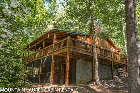 Mountain Laurel Cabin Rentals Blue Ridge Ga by Screened In Porch With Fireplace Screened In Porch With