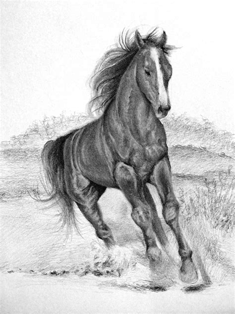 Sketches Horses by Horses Drawings In Pencil Step By Step