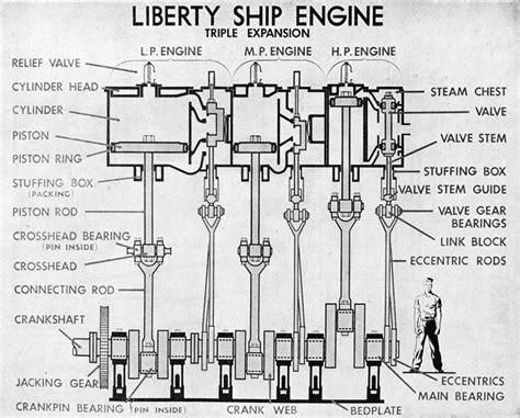 expansion steam engine diagram engineering branch part 3