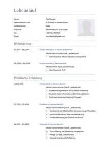Lebenslauf Muster Kopieren Lebenslauf Muster F 252 R Krankenpfleger Lebenslauf Designs