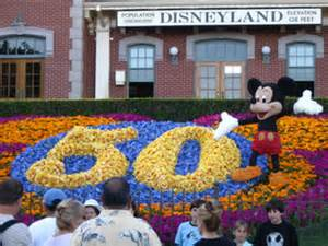 disney s horticulture plants the holidays