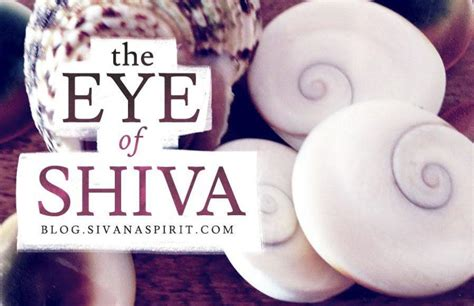 The Eye Of Shiva the eye of shiva