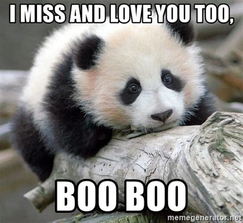 Sad Panda Meme Generator - i miss and love you too boo boo sad panda meme generator