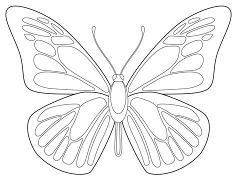 draw free drawings free coloring pages of draw butterfly