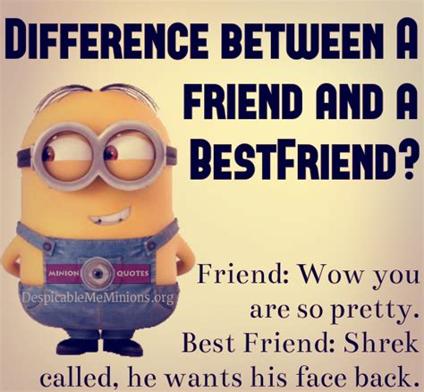 friend best difference between a friend and a best friend minion quotes