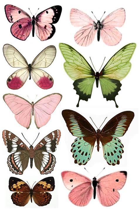 printable images of butterflies shtomaniya free printables butterflies free