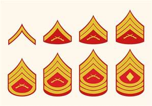 ranks in marine flat marine corps rank vectors free vector