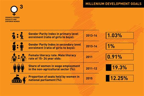 Gender Issues In India Essay by Write My Paper Free Gender Equality And The Millennium Development Goals Australia