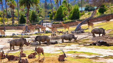 map san diego zoo safari park san diego zoo safari park visit oceanside