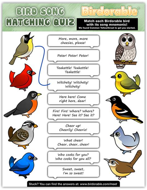 printable bird quiz games