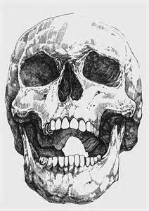 best 25 skull sketch ideas on pinterest skull