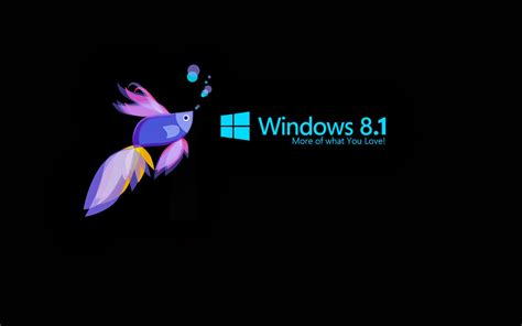 Desktop Themes For Windows 8 1 Free Download | windows 8 1 wallpapers pictures images