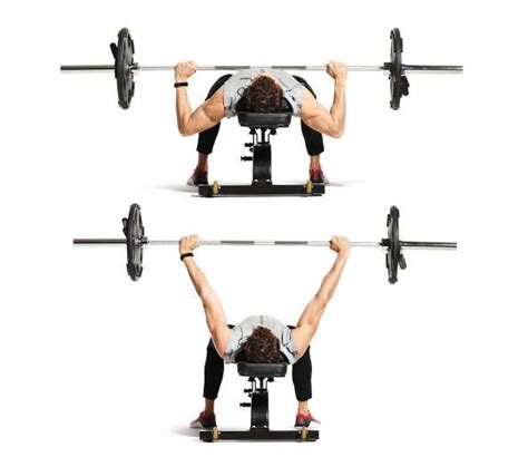 flat bench barbell chest press 44 best images about my board on pinterest protein