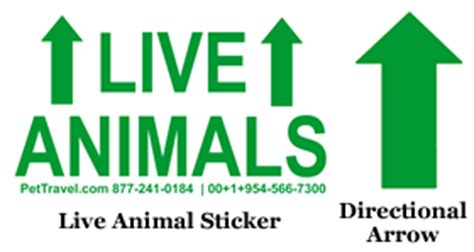 printable live animal stickers pet cargo crate live animal stickers images frompo