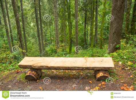 bench in forest bench in the forest stock photo image 60863228
