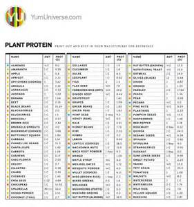 plant protein chart by yumuniverse foodie