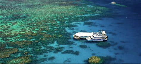 great barrier reef pontoon great barrier reef pontoon cairns reef trip