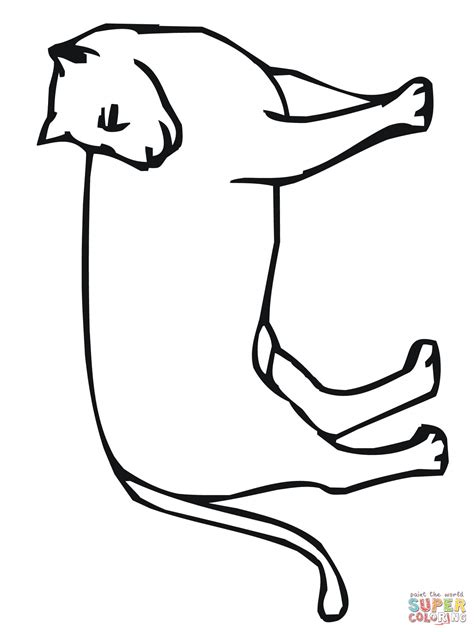 coloring pages mountain lion pin coyote coloring page on pinterest