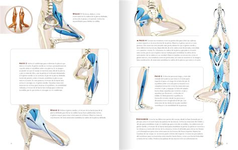libro anatoma para posturas de anatom 237 a para vinyasa flow y posturas de pie editorial acanto s a