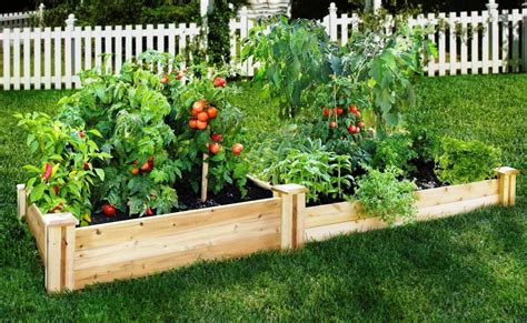 Backyard Vegetable Garden Ideas Simple Small And Easy Diy Raised Bed Designs For Vegetable Gardens With Tomato Pepper And Other