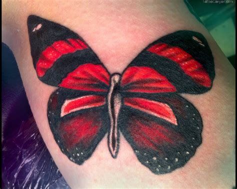 black and red tattoo black and lovely butterfly jpg