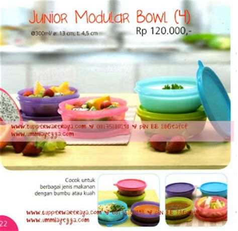 Tupperware Kecil tupperware bowl kecil tupperware