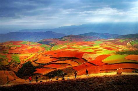 tierras rojas red 8420678058 la tierra roja de dongchuan la de la agricultura en yunnan