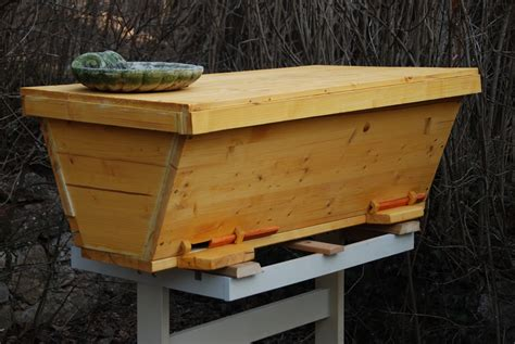 kenyan top bar hive plans kenya top bar hive model i photo yuri goldfuss pictures