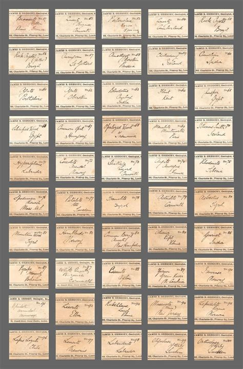 88 Best Images About Antique Slides And Specimen Labels On Pinterest The Journal Museums And Mineral Specimen Label Template
