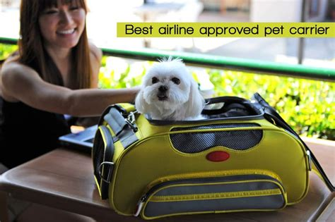 airline approved pet carriers  dogs  cats