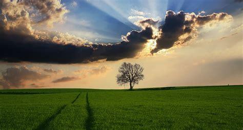 imagenes lindas naturaleza frases de la naturaleza cortas reflexiones poemas
