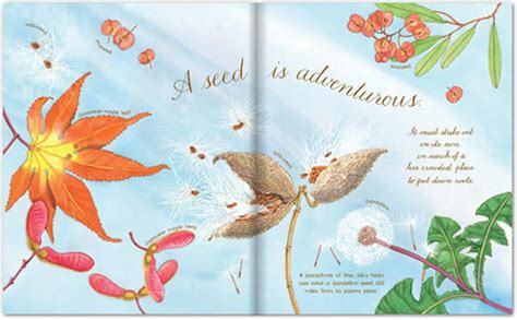 a seed is sleepy readeo children s books a seed is sleepy dianna hutts aston