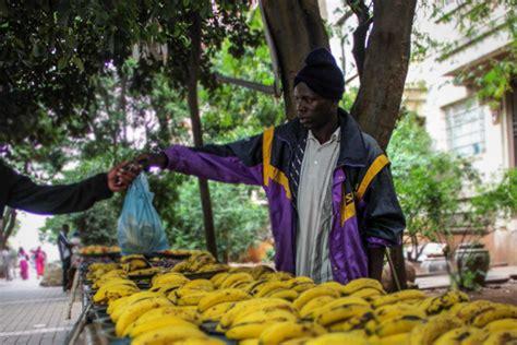 south africas informal economy