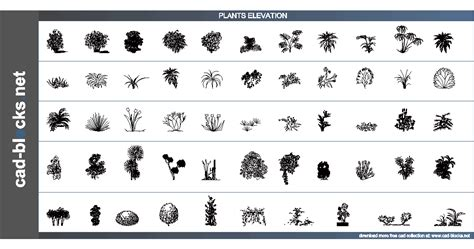 Potted Plants by Vegetation Cad Blocks Plants In Elevation View