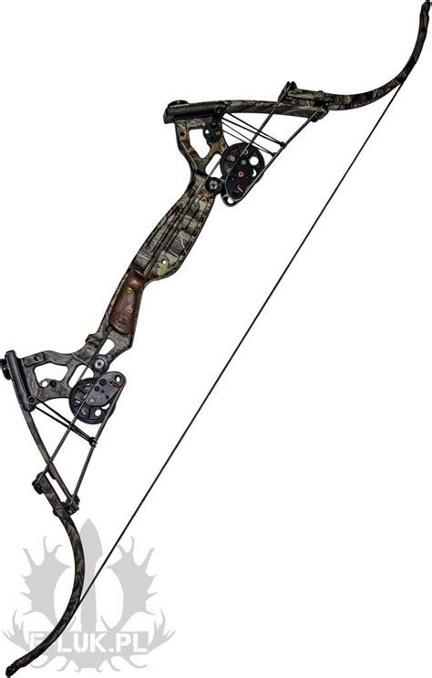 best compound bows 25 best ideas about compound bows on compound