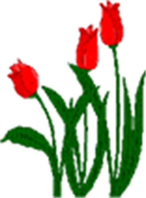 cara membuat gif dari iphone 60 gambar animasi tumbuhan bunga cantik untuk power point