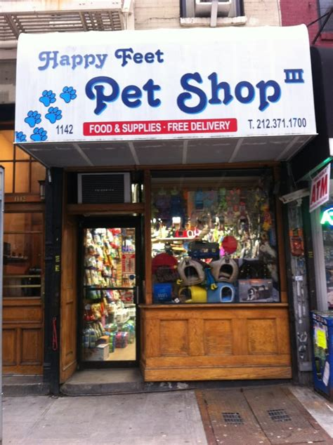 puppy stores in florida happy pet shop iii 19 photos pet stores east side new york ny