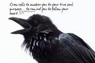 Crow indian art for pinterest
