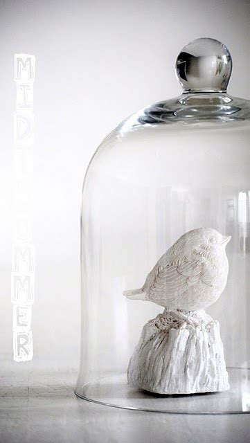 room remix best decorating glass domes 17 best ideas about glass domes on easter
