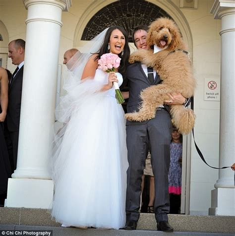 Wedding For Your Beloved Pet by Couples Paying For Pet Care Services At Their Weddings
