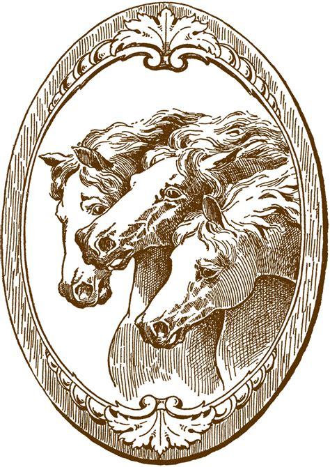 vintage illustration vintage horse illustrations the graphics fairy
