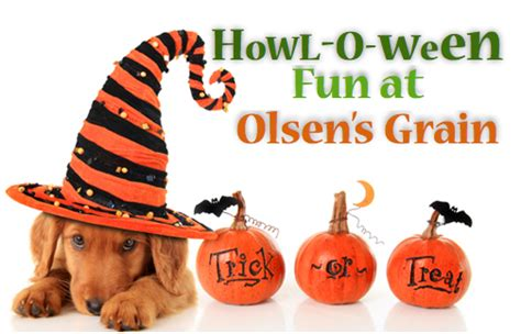 Halloween Costume Giveaway - halloween costume contests olsen s